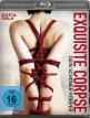download Exquisite.Corpse.Dein.schoener.Koerper.2021.German.720p.BluRay.x264-GMA