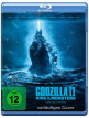 download Godzilla.2.King.Of.The.Monsters.2019.German.AC3MD.TS.x264-HELD