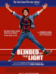 download Blinded.By.The.Light.2019.German.AC3MD.WEBRip.XViD-HELD