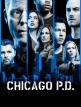 download Chicago.PD.S06E13.GERMAN.1080p.WEB.H264-VoDTv