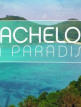 download Bachelor.in.Paradise.S02E02.GERMAN.HDTV.x264-RTL