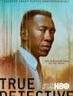 download True.Detective.S03E06.German.DL.1080p.HDTV.x264-AIDA