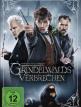 download Phantastische.Tierwesen.2.Grindelwalds.Verbrechen.EXTENDED.2018.German.DTSD.DL.1080p.BluRay.x264-MULTiPLEX