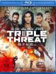 download Triple.Threat.2019.WEBRip.German.AC3.x264-PS