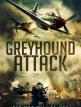 download Greyhound.Attack.German.2019.BDRiP.x264-PL3X