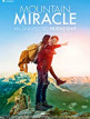 download Mountain.Miracle.2017.BDRip.x264-JustWatch