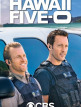 download Hawaii.Five-0.S09E03.GERMAN.DL.DUBBED.1080p.WEB.h264-VoDTv