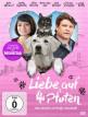 download Liebe.auf.4.Pfoten.2016.GERMAN.DL.COMPLETE.PAL.DVD9-iNViTE