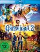 download Gaensehaut.2.Gruseliges.Halloween.2018.German.BDRip.AC3.XViD-CiNEDOME