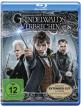 download Phantastische.Tierwesen.Grindelwalds.Verbrechen.EXTENDED.2018.German.DTSD.1080p.BluRay.x265-UNFIrED