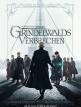 download Phantastische.Tierwesen.Grindelwalds.Verbrechen.2018.German.DL.1080p.BluRay.x264-ENCOUNTERS