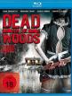 download Dead.in.the.Woods.2016.GERMAN.UNCUT.720p.BluRay.x264-UNiVERSUM