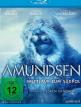 download Amundsen.Wettlauf.zum.Suedpol.2019.German.DTS.DL.1080p.BluRay.x264-LeetHD