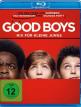 download Good.Boys.Nix.fuer.kleine.Jungs.German.2019.AC3.BDRip.x264-COiNCiDENCE