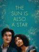 download The.Sun.Is.Also.A.Star.Ein.einziger.Tag.fuer.die.Liebe.2019.German.DL.1080p.HDTV.x264.READ.NFO-NORETAiL