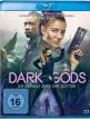 download Dark.Gods.Die.dunkle.Seite.der.Goetter.2018.German.DTS.DL.1080p.BluRay.x264-KOC