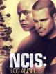 download NCIS.Los.Angeles.S11E10.German.Webrip.x264-jUNiP