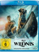 download Ruf.der.Wildnis.2020.German.AC3.UHD.BDRiP.XViD-HaN
