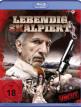 download Lebendig.Skalpiert.2020.German.1080p.BluRay.x264-PL3X