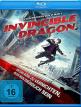 download Invincible.Dragon.GERMAN.2019.AC3.BDRip.x264-UNiVERSUM