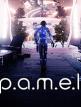 download P.A.M.E.L.A.Build.4570136-P2P