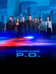 download Chicago.PD.S07E03.German.1080p.WEB.h264-WvF