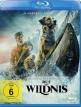 download Ruf.der.Wildnis.2020.German.DL.DTS.720p.BluRay.x264-SHOWEHD