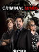 download Criminal.Minds.S15E08.German.DL.DUBBED.WebRip.x264-CNHD