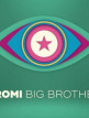 download Promi.Big.Brother.S08E06.GERMAN.HDTVRiP.x264-iNFOTv