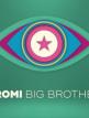 download Promi.Big.Brother.S08E10.GERMAN.HDTVRiP.x264-iNFOTv