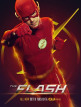 download The.Flash.2014.S06E09.-.E13.GERMAN.HDTVRip.x264-MDGP