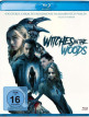 download Witches.in.the.Woods.2019.German.DTS.1080p.BluRay.x265-UNFIrED