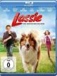 download Lassie.Eine.Abenteurliche.Reise.2020.German.AC3.BDRiP.XviD-SHOWE