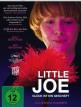 download Little.Joe.Glueck.ist.ein.Geschaeft.2019.German.AC3.Dubbed.BDRip.x264-PRD
