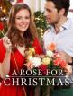 download Rosige.Weihnachten.German.2017.AC3.DVDRip.x264-SAVASTANOS