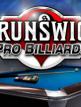 download Brunswick.Pro.Billiards-SKIDROW