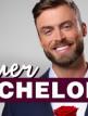 download Der.Bachelor.S11E01.GERMAN.720p.WEB.x264-RUBBiSH