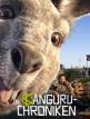 download Die.Kaenguru.Chroniken.2020.German.1080p.BluRay.x264-DETAiLS