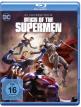 download Reign.of.the.Supermen.2019.1080p.BluRay.x265-BluRHD