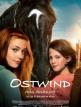 download Ostwind.4.Aris.Ankunft.GERMAN.2019.AC3.BDRip.x264-UNiVERSUM