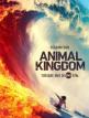 download Animal.Kingdom.S04E01.German.DL.DUBBED.1080p.WebHD.x264-AIDA