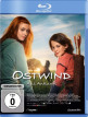 download Ostwind.4.Aris.Ankunft.2019.German.AAC.BDRiP.x264-MOViEADDiCTS